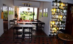 Naturalia Café 2